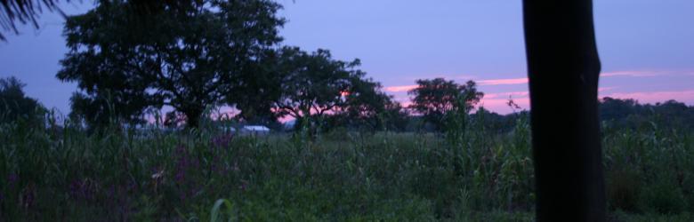 dove:tramonto